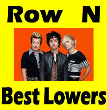 2 or 4 Tickets GREEN DAY Auckland Lower Level Row N Vector Arena 13th May