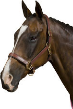 Deluxe Padded Break Away Leather Horse Halter