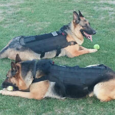 Tactical Outdoor Military Dog Clothes Load Bearing Training Vest Harness BG