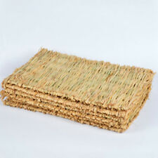 Woven Grass Mat for Rabbits Small Animals Natural Handmade Seagrass Mat Unique