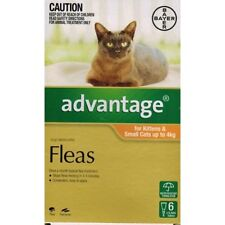 New Advantage (6 Doses) Kittens & Small Cats up to 4kg Pet