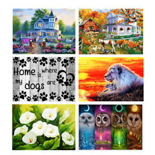 DIY 5D Diamond Painting Cross-stitch Embroidery Kit DIY Wall Home Decor 40x30cm