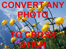 CONVERT ANY PHOTO TO CROSS STICH CHART DMC ANCHOR ARIADNA MADEIRA