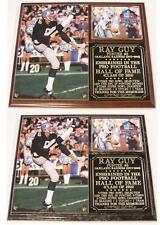 Ray Guy #8 2014 Pro Football Hall of Fame Oakland Raiders Legend Photo Plaque