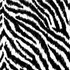 NEW LUXURY MASAI ZEBRA STRIPE ANIMAL SKIN PRINT FEATURE WALL 10M WALLPAPER ROLL