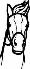 """* Face of horse front look vinyl decal sticker car truck home mirror wall 3"""" x 6"""