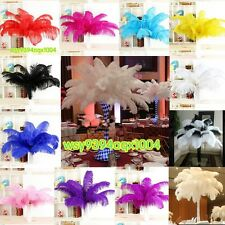 NEW 5-100 pcs High Quality natural OSTRICH FEATHERS 15-55cm/6-22'inch Fashion
