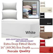 100% EGYPTIAN COTTON 200TC EXTRA DEEP FITTED SHEET SINGLE DOUBLE KING SUPER KING