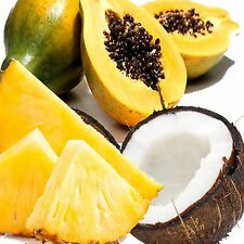 PAPAYA & PINEAPPLE COCONUT Fragrance Oil Candle/Soap Making,Oil Burner,Diffusers