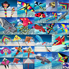 Kite Bird Hawk Plane Rainbow Delta Fish Ladybird Duck Kites line included OKITE