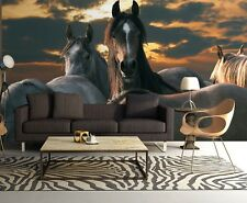 254x183cm Large Wall mural photo wallpaper Wild horses - bedroom decor - brown