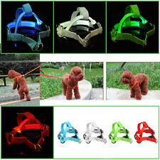Cute LED Flashing Light Dog Harness Pet Rope Belt Safety Glow Leash Lead