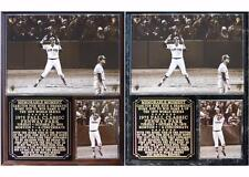 Carlton Fisk #33 Boston Red Sox Legend Photo Plaque 1975 World Series Gm 6