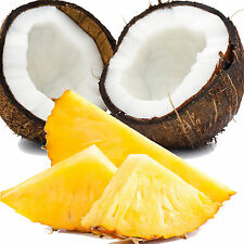 COCONUTS & PINEAPPLES Bath Body & Massage Oil EXTRA STRONG TRIPLE SCENTED
