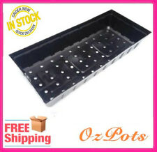 Plastic Punnet Tray - Great for Propagation, Seedling, Sprouting