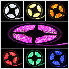 5M 16.4ft 60/m 300leds DC 12v SMD 5050 IP65 waterproof Flexible led Strip light