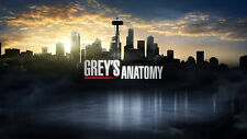 Greys Anatomy TV Show Fabric Art Cloth Poster 24inch x 13inch Decor 03