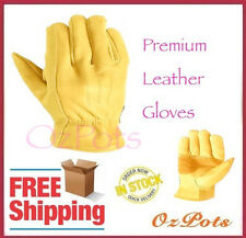 Gloves - Premium Cowhide Leather- All Purpose Work or Gardening Glove