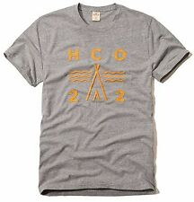 New Hollister By Abercrombie & Fitch Men's Graphic Logo T Shirt Gray