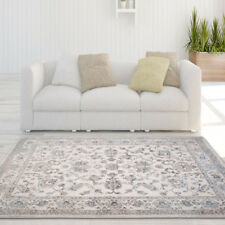 Ivory Bordered Area Rug Traditional Persian Oriental Vines Scrolls Floral Carpet