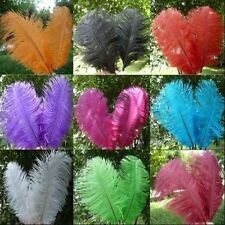 Wholesale 10PCS High Quality Natural Ostrich Feathers 10-12inch/25-30cm CA