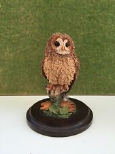 Country Artists Tawny Owl Ornament