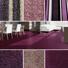 Quality Purple Carpets - Cheap Rolls Brand New Carpet - Loop, Twist, Saxony Pile