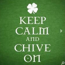 Authentic IRISH Keep Calm and Chive On Tee - KCCO - Size XL