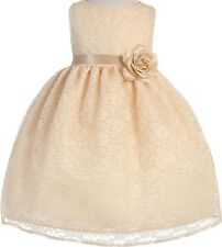 Baby Flower Girl Sleeveless Floral Lace Special Occasion Dress