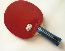 Palio 2Star Expert Table Tennis Bat, CJ8000 rubbers & Case, New,  US