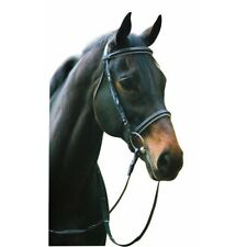 Henri de Rivel Dressage Bridle with Padded Flash Cavesson and Web Reins