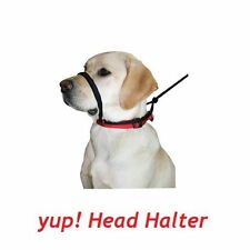 Comfort Sporn Head Control Halter For Tough Pullers Converts To Collar Black