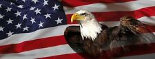 AMERICAN USA FLAG EAGLE PICK-UP TRUCK BACK WINDOW GRAPHIC DECAL PERFORATED VINYL