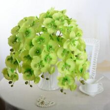 1Pcs Artificial Real Touch Phalaenopsis Orchid Home Decor Silk Home Office Decor
