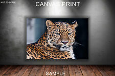 Leopard V2 CANVAS PRINT READY TO HANG or ROLLED FROM A4