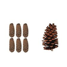 High Quality Dried Pine Cones Christmas Wreath Natural Home Decor Ornaments
