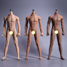 1:6 Silicone Male Body Muscular Figure 12'' Action Model General/Wheat/Black