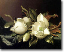 HUGE Heade Magnolias Stretched Canvas Giclee Art Repro Print ALL SIZES