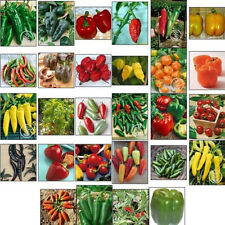 30 PCS Bell Pepper Seed also Sweet Excellent Top Cute all Heirloom Survival Seed