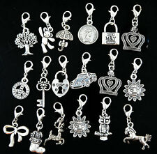 5pc Clip on Charms Free Shipping Fit Chain Bracelet Pendant For Floating Locket