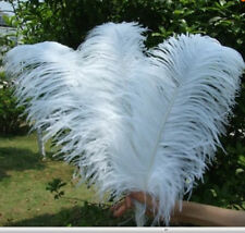 Wholesale 10pcs High Quality Natural white OSTRICH FEATHERS 20-50cm/8-20'inches