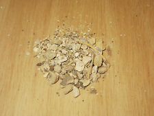 Pleurisy Root / Silkweed / Chigger Cut Sifted 1 2 4 8 12 oz ounce lb lbs pound