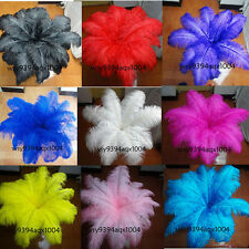 Wholesale 10-200pcs Wedding feathers ostrich feathers 6-18inch/15-45cm Bulk