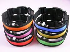 LED Flashing Lighted Safety Pet Dog Collar Pet Durable LED Lighting S/M/L/XL NEW