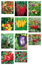 Pepper Paradise - A Small Selection of Hot, Sweet & Ornamental Pepper Seeds