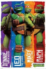 New TMNT Donnie, Leo, Mikey & Raph Teenage Mutant Ninja Turtles Poster