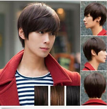 Hot Men's Handsome Short Straight Hair Korean Full Wigs Cosplay Party 3 Colors