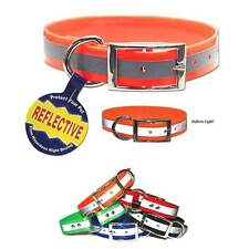 REFLECTIVE SunGlo All Weather Dog Collar * Waterproof Odor Mildew Rot Resistant
