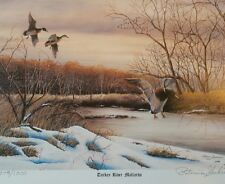 """Turkey River Mallards""-P.Shahrivar Limited Edition Signed Artist Print Picture"