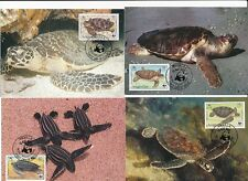 D94309 Turtles WWF Complete Set of 4 Maxicards Anguilla